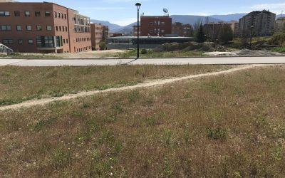 La Universidad de Jaén adjudica la construcción de su Complejo de Investigación a Pinus, Construcciones Calderón y Solar Jiennense